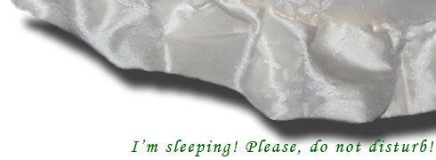 I am sleeping, please, Do Not Disturb!